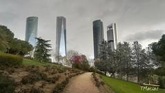 Cuatro Torres en día gris (temacimore) Tags: cuatrotorresmadrid 4torres parquesmadrid madridciudad madrid parquenortemadrid