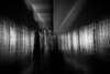 the vortex of your mind (ChrisRSouthland) Tags: brisbane camera nikond800 places zeissdistagon21mmf28 blackandwhite monochrome bw motionblur icm
