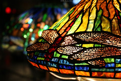 Tiffany Glass collection: Dragonfly (Can Pac Swire) Tags: usa us unitedstates america american newyork city manhattan upperwestside museum historical society 170 centralparkwest tiffany glass lamp lampshade collection dregonneustadt dragonfly vibrant colorful colourful 2018aimg7430 stained louis comfort