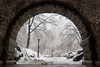 Inscope Arch (Central Park) (paul.wasneski) Tags: newyork unitedstates us centralpark nyc snow arch interscopearch
