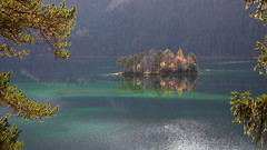through trees (bkellerstrass) Tags: eibsee see alpen alps lake bayern bavaria ludwigsinsel herbst gegenlicht insel baum grainau