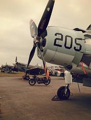 "Douglas AD4N Skyraider , Spitfire Mk.Vb ""City of Winnipeg"", Curtiss H75,etc... (Aerofossile2012) Tags: douglas ad4n skyraider avion aircraft aviation laferté meeting airshow"