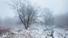 Winter walking (J C Mills Photography) Tags: peak district snow fog derbyshire