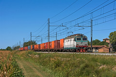 FS E633 240 (maurizio messa) Tags: e633 tigre cargo pavese lombardia mau bahn ferrovia freighttrain fret treni trains railway railroad nikond7100 mir