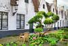 Bruges. The St.Jozef Almhouses (Godshuizen) complex (jackfre 2) Tags: belgium flanders bruges almshouses stjozef stjozefalmhousescomplex
