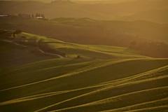 Leave me here.. (Antonio Cinotti ) Tags: landscape paesaggio toscana tuscany italy italia siena hills colline campagnatoscana cretesenesi asciano nikond7100 nikon d7100 rollinghills sunset tramonto sanmartinoingrania
