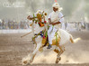 Rider (TARIQ HAMEED SULEMANI) Tags: sulemani supershot sensational summer jahanian tariq tourism trekking tariqhameedsulemani travel tentpegging horses concordians culture