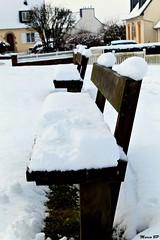 Photos Marco BP (40)_GF (marcbihanpoudec) Tags: bretagne neige plabennec plan deau lac banc arbres jonquilles