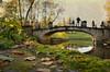 Свидание (Tutchka) Tags: вечер вода луч лучик люди мост мостик осень павловск пара парк прогулка разное свидание солнце фактура фигура