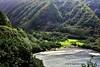 Road to Hana (Standing Hawk) Tags: hana maui roadtohana tropics hawaii ocean southarmstudio