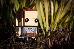 Suddenly a wild Rey appears. (Marius K. Eriksen) Tags: lego blockheadz rey star wars