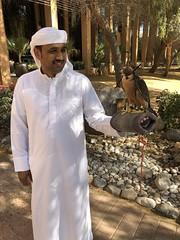 Ras Al Khaimah, UAE, 2018 94 (Travel Dave UK) Tags: rasalkhaimah uae 2018
