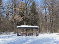 park Ostankino (VERUSHKA4) Tags: canon europe russia moscow ville city cityscape park ostankino winter wintry season spring march day sunny sky blue tree nature trunk bough branch bench snow neve ciel vue view neige light shadow shade wooden alcove roof firtree