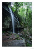 Slick Rock Falls (John Cothron) Tags: 2jtrip2009 5dclassic 5dc americansouth brevard cpl canonef24mmf14l carolinas cothronphotography dixie johncothron nc northcarolina pisgahnationalforest southatlanticstates southernregion thesouth transylvaniacounty us usa usaphotography unitedstatesofamerica circularpolarizingfilter creek environment falling flowing forest freshwater landscape lateafternoon longexposure nature outdoor outside protected river rockformations scenic spring stream travel water waterfall img596420090506co4162018 ©johncothron2009 slickrockfalls