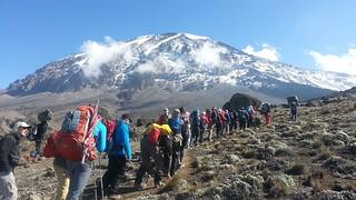 www.kilimanjaro-climbing-groups.com