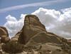Large format rock (ADMurr) Tags: california desert joshuatreenationalpark joshua tree lf toyo 135mm lens kodak portra expired dac748edit granite monzogranite