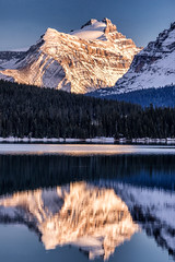 Bow Lake, Banff National Park (aud.watson) Tags: canada alberta canadianrockies albertasrockies bowvalley bowlake mountain mountains mountainside valley valleys peaks glacier glaciers lake glaciallake shore water reflections ice snow cloud clouds sunset dusk forest wood tree trees conifers landscape rock rocks field ca