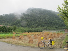 First day of cycling to Huangshan (Gavin Anderson) Tags: china cycling tour