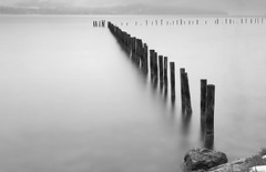 Les gardiens du lac (paul.porral) Tags: lac lake landscape nature flickr water longexposure poselongue le blackandwhite noiretblanc nb monochrome bnw ngc waterscape absoluteblackandwhite