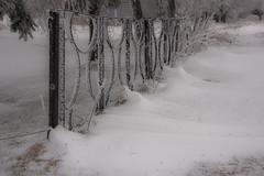 Märzwinter II (Deutscher Wetterdienst (DWD)) Tags: winter schnee snow frost frosty schneewehen winterlandscape winterlandschaft
