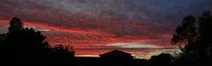 Sunrise Panorama (Greenstone Girl) Tags: sunrise melbourne se suburbs red clouds panorama