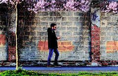 P1000211 (gpaolini50) Tags: urban urbanscape urbanvisions emotive esplora explore explored emozioni explora emotion photoaday photography photographis photographic photo phothograpia pretesti photoday