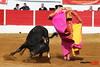 126 Aignan - Matinal - 01-04-2018 Philippe Gil Mir (Philippe Gil Mir) Tags: aignan philippe gil mir camino de santiago yon lamothe dorian canton