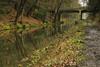 Basingstoke Canal (gladysperrier@btinternet.com) Tags: frimley places surrey canal basingstoke deepcut