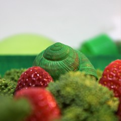 Strawb'n'green (tamara_borgia) Tags: cabbage food green healthy natural organic strawberry vegetarian view berries color dieting eating fruit full group ingredients juicy raw red ripe vegetables vegetarianfood aromatic background fresh garden contrast snail helix cochlea stillife funny