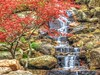 Babbling Brook (clarkcg photography) Tags: water falling waterfall falls spring colors alive saturated saturatedsaturday landscapesaturday saturdaylandscape 7dwf