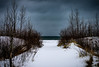 To the Beach (aT0Mx) Tags: path snow winter spring branches white sticks water beach trees tree pentax pentaxart pentaxlens smc k5 presquile provincialpark 55300mm brighton ontario canada
