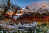 A day in Patagonia. (Valter Patrial) Tags: hill landscape mountain range peak scenery valley ridge scenic snowcapped scenics rolling landscapes land trees tree mountains montefitzroy patagonia elchaltén ar argentina