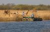 752A2404 (Trefor2011) Tags: boating norfolk norfolkbroads reedcutting riverbure stbenetsabbey boatbarge reeds horning england unitedkingdom gb