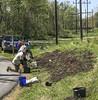oklawaha pollinator planting 042118-35 (NCAplins) Tags: hendersonville northcarolina unitedstates us