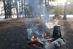 The great Canadian tea ceremony (davebloggs007) Tags: the great canadian tea ceremony camp fire canada