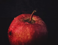 (tojsrevathy) Tags: black red fruit apple