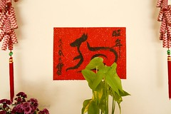 It's the Year of the Dog (lh tanG) Tags: calligraphy