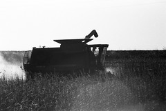 Back to the Fields (Brian Gilbreath) Tags: ifttt 500px farm tractor agriculture rural scene agricultural equipment field rubber boot barn hay shed picnic basket dairy monochrome black white bw film 35mm iowa united states america midwest farming corn
