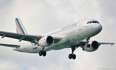 Air France 🇫🇷 Caribbean ☀️🌴🌊 (Maxime C-M ✈) Tags: martinique fly clouds travel aviation antilles colors exotic tropical island passion airplane discover white guadeloupe paris 2024 olympic games