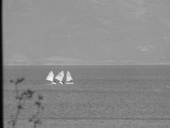 Three!!!P1040280 (amalia_mar) Tags: three sea sailing sailingboats sky bw 7dwf weeklythemes letteroftheday thforthursday sundaylights