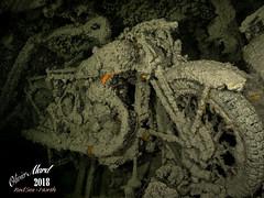 IMG_4442-M1s (oalard) Tags: redsea merrouge epave wreck g16 sousmarine submarinephotography thistlegorm