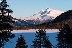 Across the Lake (Lars Ørstavik) Tags: landscape lake wintermountain mtveirahaldet pine ørsta sunnmøre norway winter mountain coniforousforest