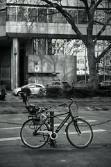 bike@a corner of Düsseldorf (Amselchen) Tags: bicycle street bnw mono monochrome blackandwhite light shadow tree sony a7rii alpha7rm2 leica leicarlens macroelmaritr60mm dof depthoffield