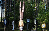 Winter Wheat - Sparta, Ontario (Mark Wordy) Tags: winterwheat ontario canada sparta rabbit clocks wooden sculpture art