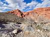 Life in the Desert (joynerplanemaker) Tags: desert red dry sky clouds blue