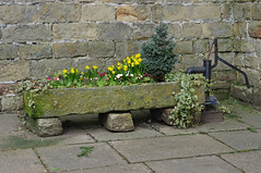 Spring has sprung... (Blue sky and countryside) Tags: stone trough waterpump ashover derbyshire narcissustetatete flowers attractive drystonewall limestone decorative village pentax
