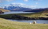 Highlands (Jose Luis RDS) Tags: escocia scotland sony rx rx10