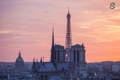 sunset 3 monuments (apparencephotos) Tags: paris eiffeltower toureiffel notredamedeparis notredame cathédralenotredamedeparis sunset france rooftop canonfrance