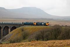 Hoovers over Ribblehead (Locma51) Tags: 50049 50007 pathfindertours ribbleheadviaduct class50alliance