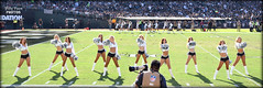 2017 Oakland Raiderettes (Line 4) - Coliseum (billypoonphotos) Tags: 18140mm 18140 2017 oakland raiders raiderettes raiderette raider nation raidernation nfl football fabulous females cheerleaders cheerleading dance dancer dancers nikon nikkor d5500 mm lens billypoon billypoonphotos silver black photo picture photographer photography pretty girls ladies women squad team people coliseum sport illora noelle catherine stephanie charlotte alyssa katie elizabeth nicola kelly grass field stadium crowd chargers